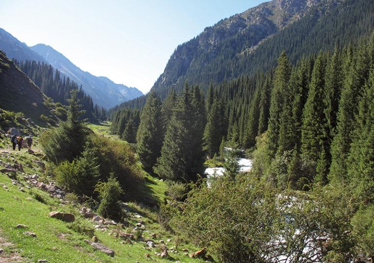 природа киргизии фото кара шоро поженилась