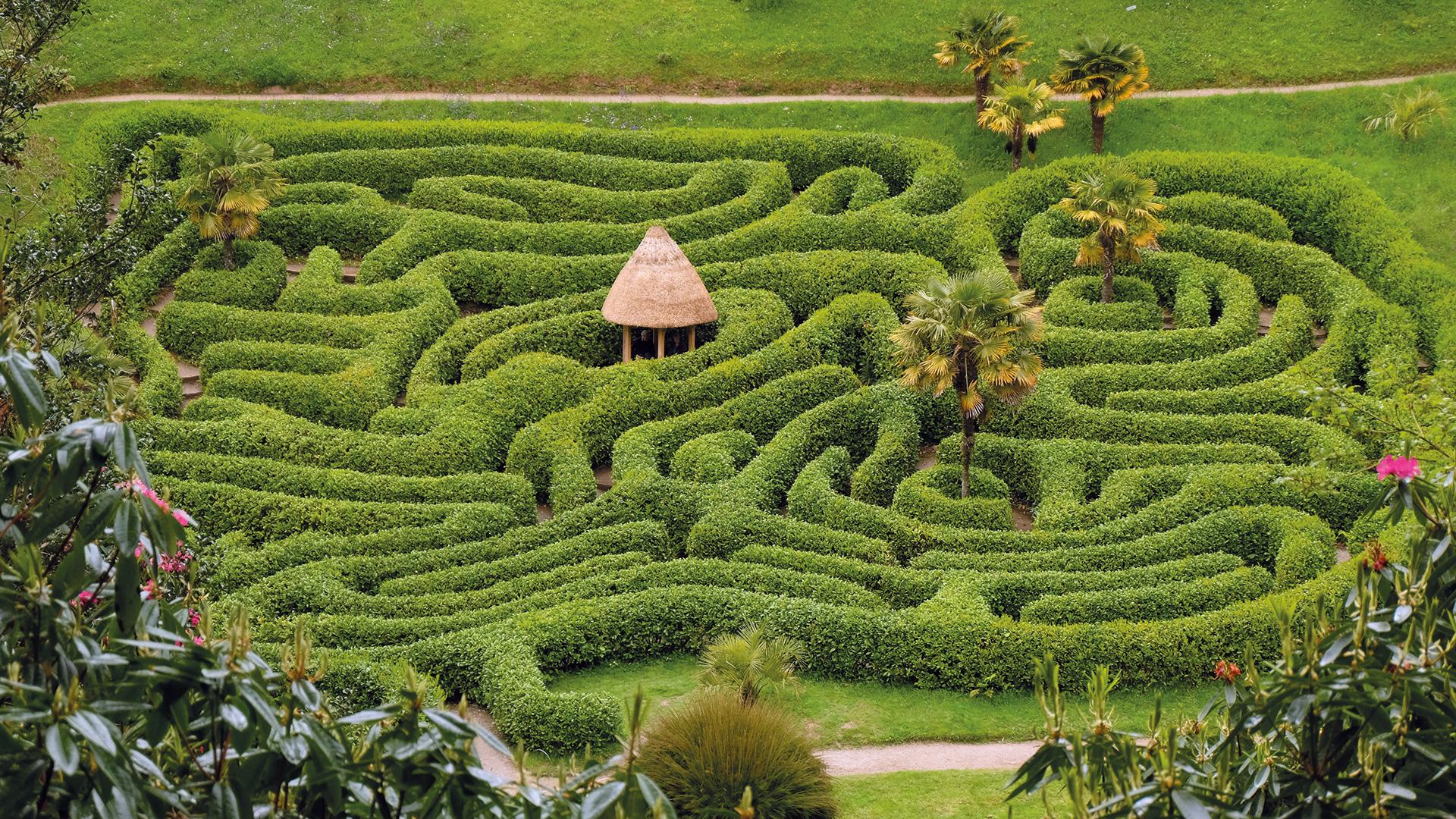 Gärten In Cornwall ic naturreise süd cornwall gärten landschaften